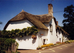 Preety thatched Somerset cottage